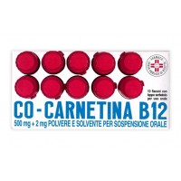 COCARNETINA B12*OS 10FL 10ML